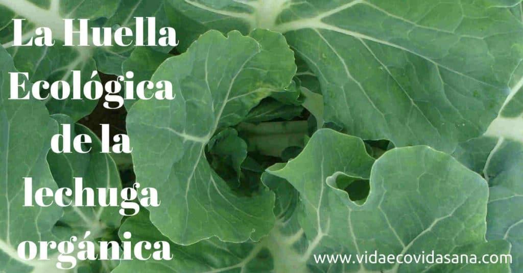 La Huella Ecologica de la lechuga organica facebook