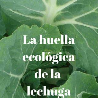 La huella ecologica de la lechuga organica pinterest