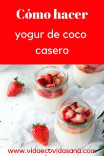 como-hacer-yogur-coco-casero-pinterest